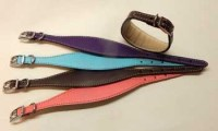 WhippetPuppy-Collars-leather