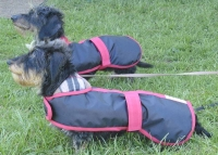 Made to measure dog coats