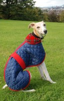 Quilted Showerproof Fleece lined Whippet Coat